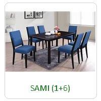 SAMI (1+6)